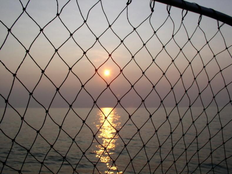 източник: maritime.bg