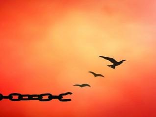 Докато не се научим да прощаваме на себе си, не можем да прощаваме на другите!