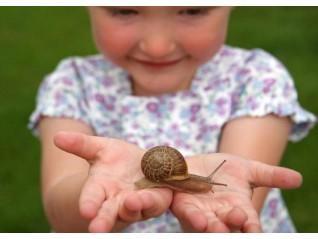 Най-важното условие за щастието на детето