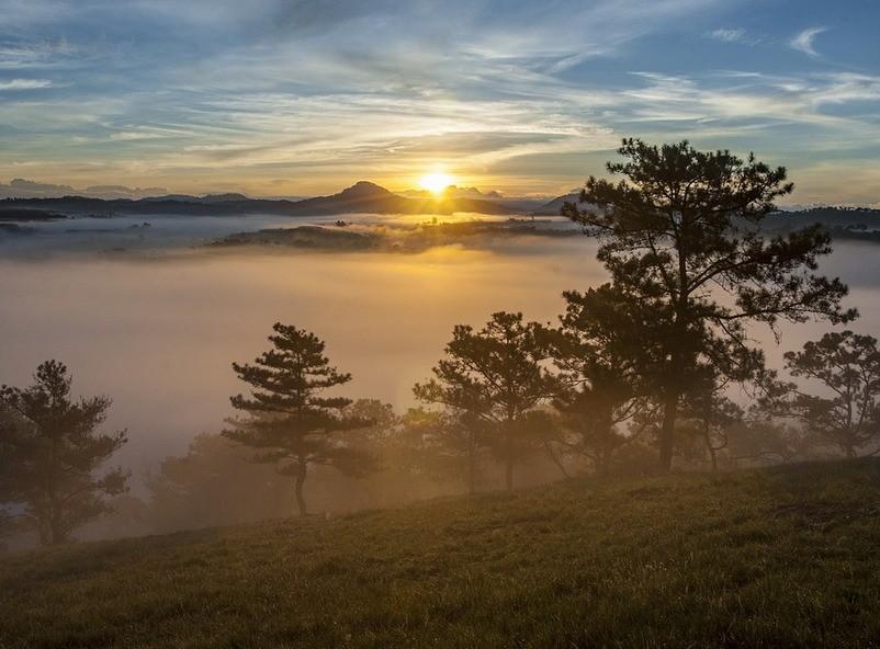 фотограф: Minh Lê (pixabay.com)